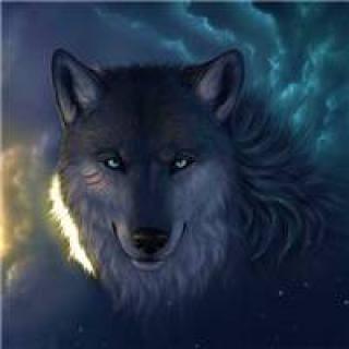 表情 狼头像霸气的 图片霸气 头像图片表情包大全 表情