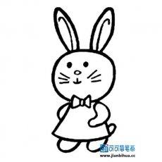 表情 小兔子的各种卡通画法 可可简笔画 表情