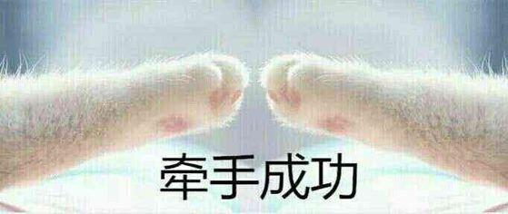 表情 猫爪丑拒表情 痛表情 卡通猫爪简笔画 捂脸笑哭表情 游戏屋 表情