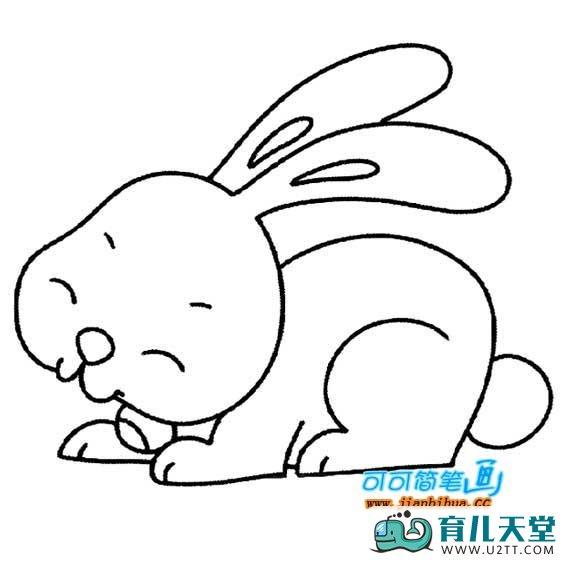 表情 小兔子的简笔画,儿童兔子简笔画 育儿天堂 表情