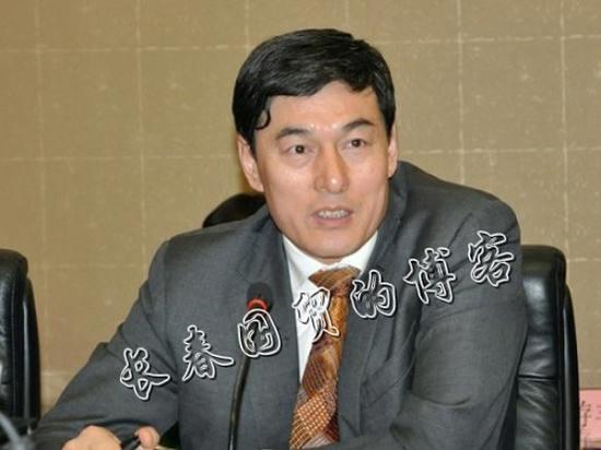 生下了一个女儿取名解丰鸣.2006年12月,毛阿敏又在上海又生下