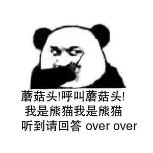 听到请回答 over over 我是熊猫我是熊猫 蘑菇头!呼叫蘑菇头!-表情