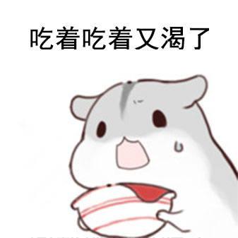 表情 小仓鼠表情包下载 小仓鼠表情包排行榜 比克尔下载 表情