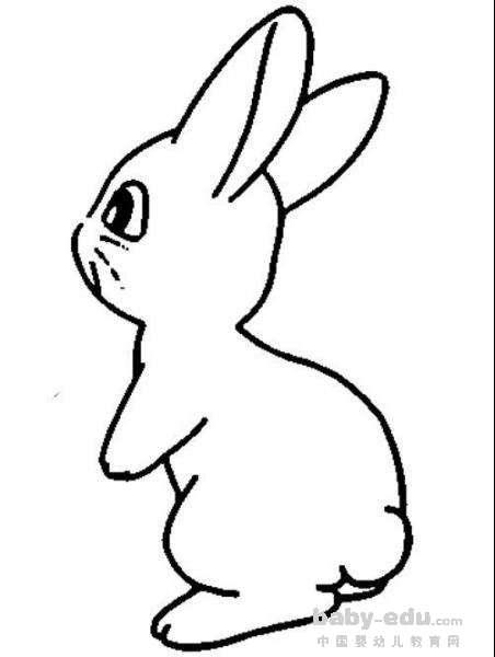 表情 手绘q版动物简笔画 呆萌的小兔子 动物简笔画 中国婴幼儿教育网 表情