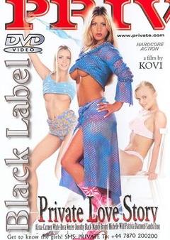 爱的故事(2002)