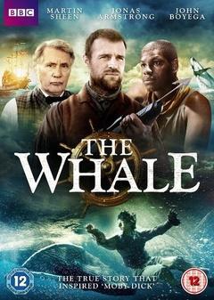 鲸鱼 (2013)