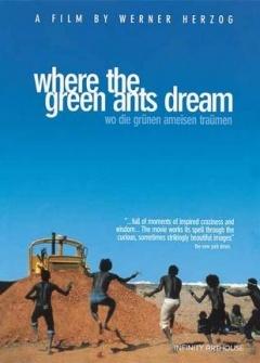 绿蚂蚁做梦的地方