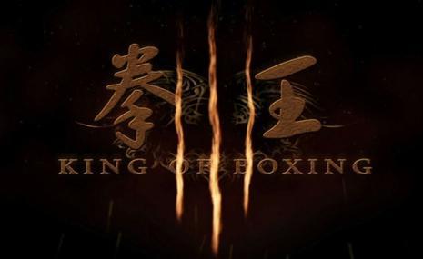 拳王(2011)
