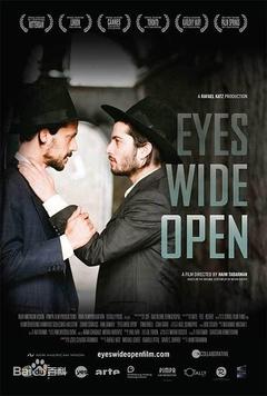 eyeswideopen(2001)