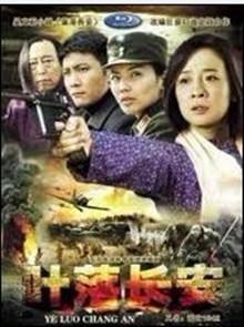 情天恨海半世缘(2011)