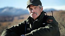 BBC 地平线系列: 后院的猎食者