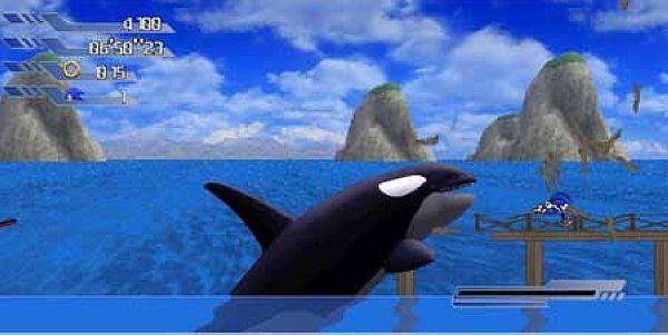 壁纸 动物 鲸鱼 600_301