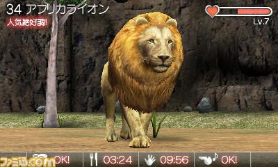 动物园 英文硬盘版
