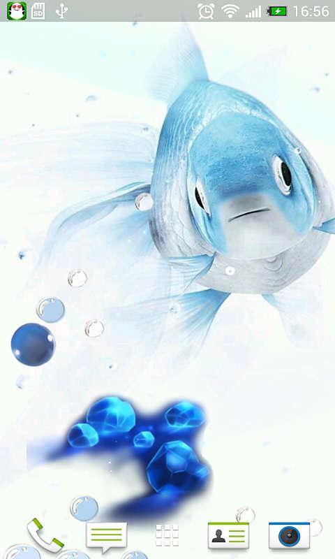 蓝色金鱼-动态壁纸