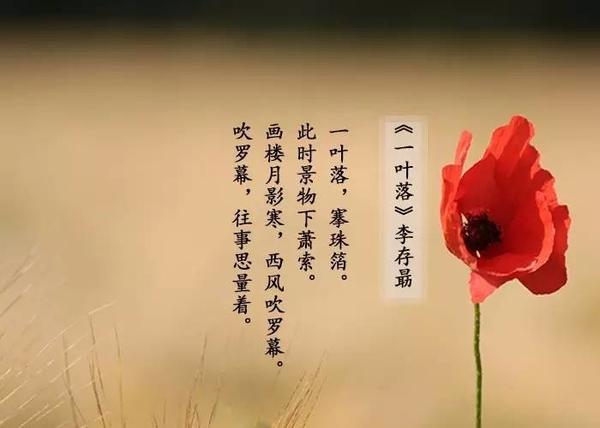 思念远方朋友的诗句