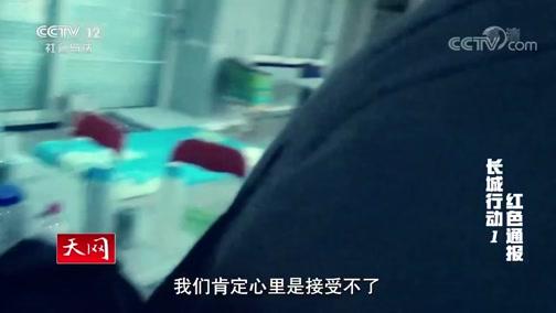 《天网》 20191021 长城行动 第一集 红色通报
