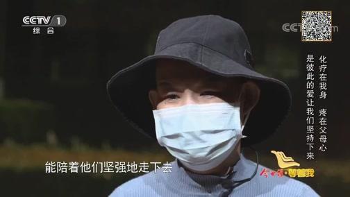 北京快3开奖结果下载版,《等着我》 20191119
