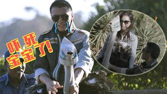 第8期:谢霆锋杨紫琼南非骑鸵鸟