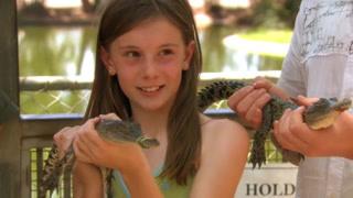 教你如何钓上一只鳄鱼