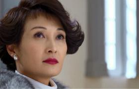 金牌律师-34:陈总与老公对簿法庭