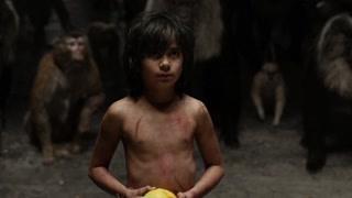 巨猿叫它枇杷果  人类叫它木瓜