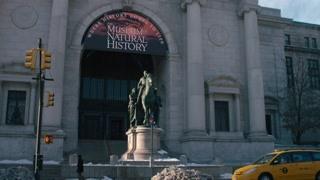 拉瑞离开纽约博物馆