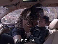 《今夜天使降临》刘涛李晨车震完整版