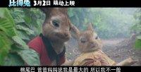 """比得兔(""""菜园大战""""片段)"""