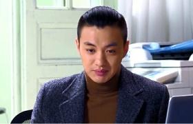 金牌律师-15:苏东专业律师风度