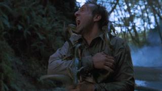 迪特尔·斯塔克被美颌龙分食