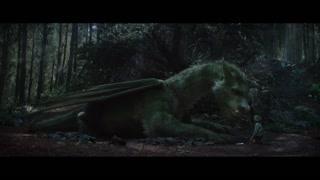 彼得抚摸心爱的龙