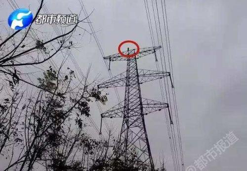 男孩赌气爬70米高压线塔