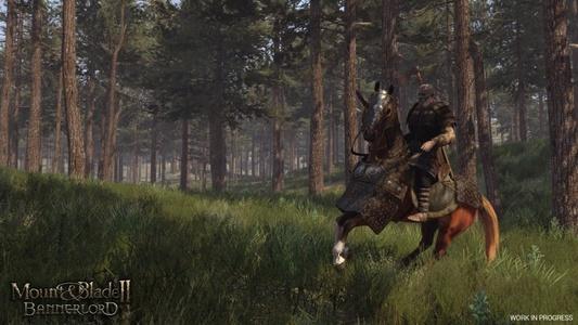《骑马与砍杀2:领主》截图