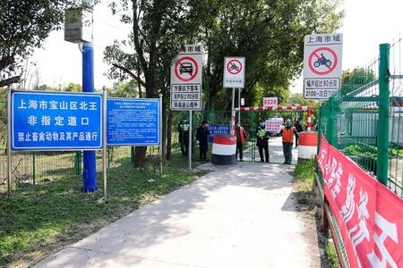 """上海""""撤门不撤岗"""",开放63处省际乡间小道"""