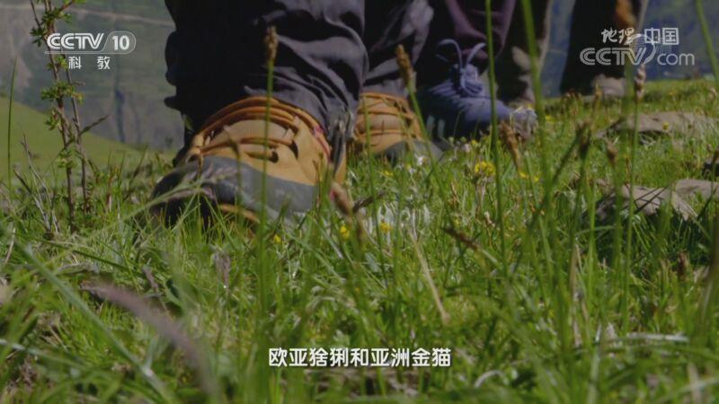 """《地理·中国》 20200926 秘境栖息地·神奇""""波浪线"""""""