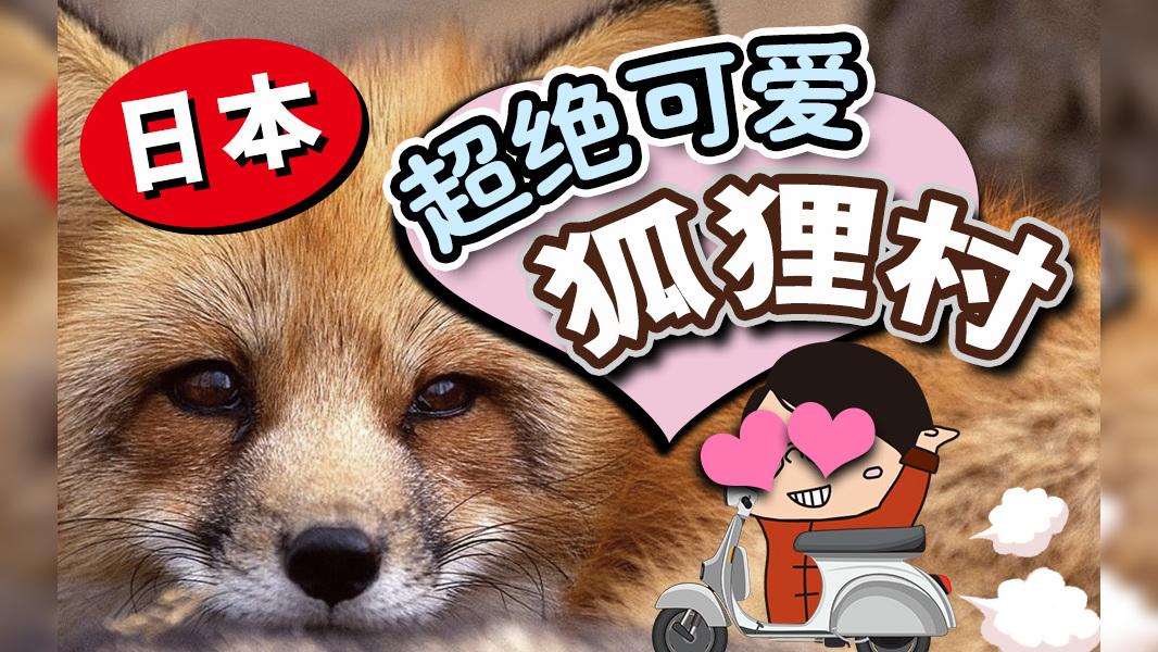 能吸100只狐狸的天堂!但鸡脖骑摩托车摔倒了?