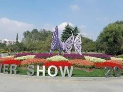 上海植物园的前世今生
