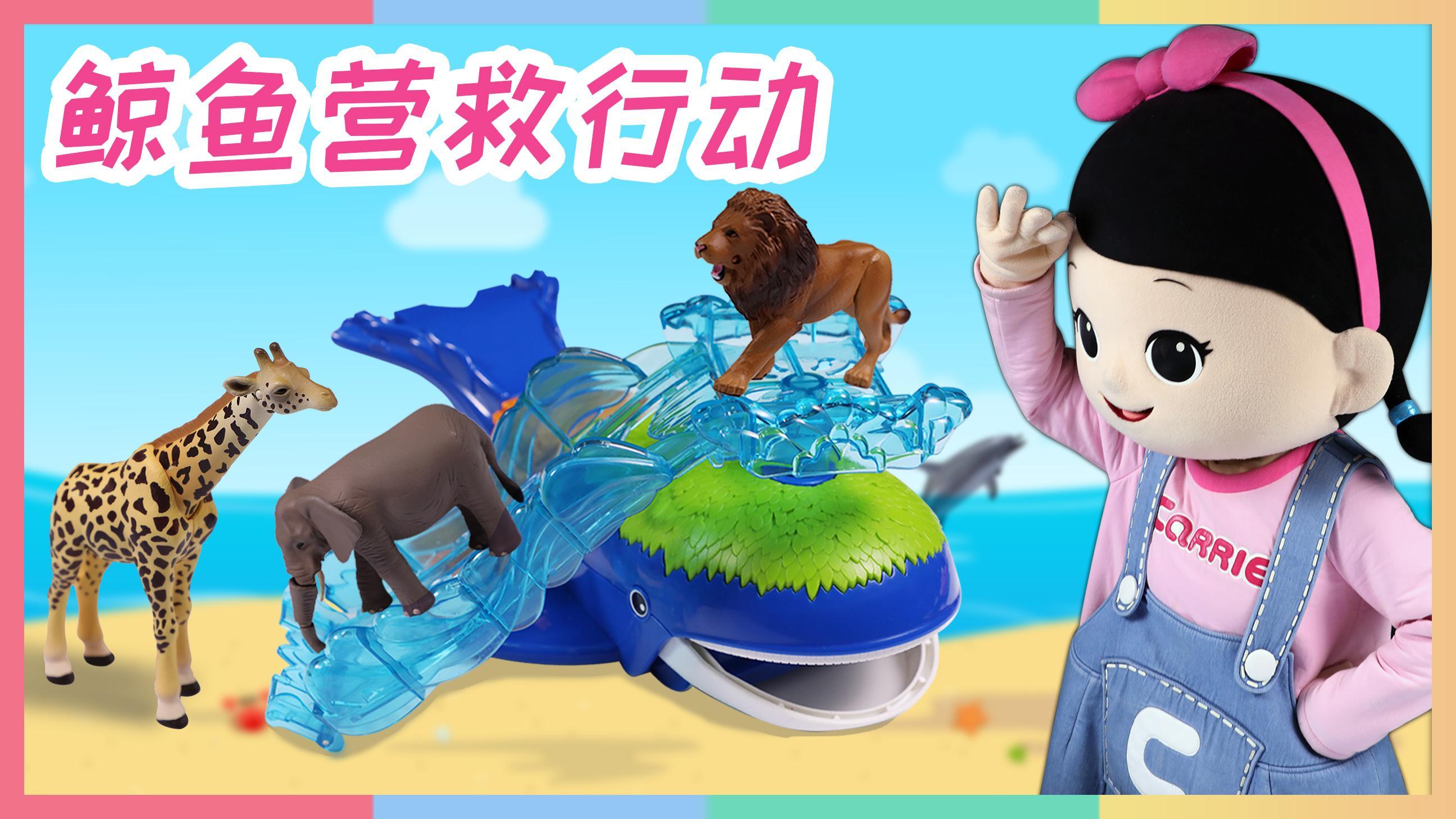 和鲸鱼救援队一起爱护地球, 守护可爱的小动物们 | 凯利和玩具朋友们 CarrieAndToys