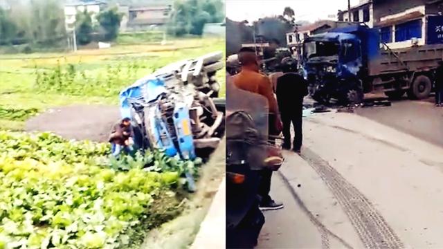 两辆货车猛烈相撞 一辆被撞出公路侧翻田里