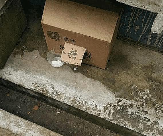 冒险岛私服开服小流浪狗在冬天冷得发抖,大妈拿着纸箱走来后,举动让人温暖