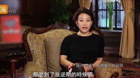 鲁豫采访陈冲,嘉宾言行举止,根本不像是娱乐圈的人