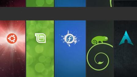 最受欢迎的Linux发行版   选择适合自己的Linux桌面版本