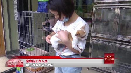 宠物得了皮肤病,会传染给人吗?记者寻兽医来了解情况!