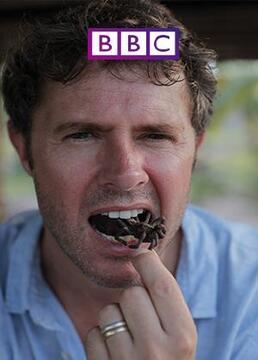 bbc吃昆虫能拯救世界吗