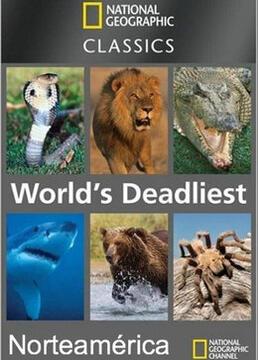 动物杀手第一季