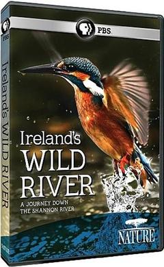 爱尔兰荒野河流剧照