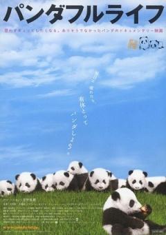 大熊猫的生活剧照