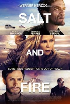 盐与火剧照
