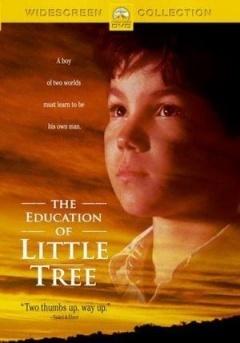 小树的故事剧照