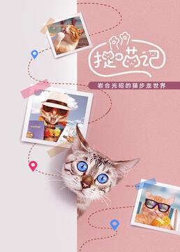 捉喵记岩合光昭的猫步走世界剧照